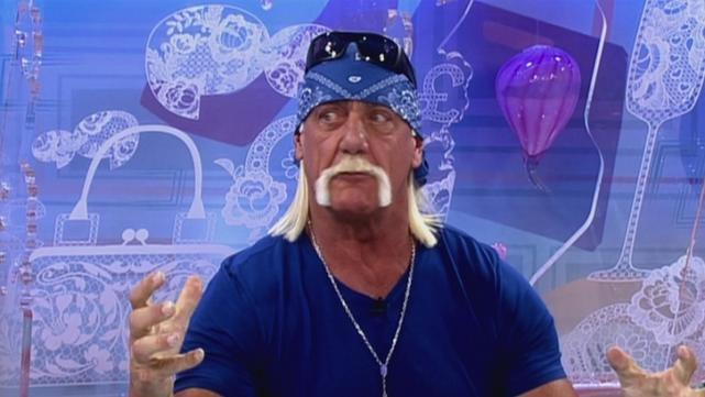 Terry bollea
