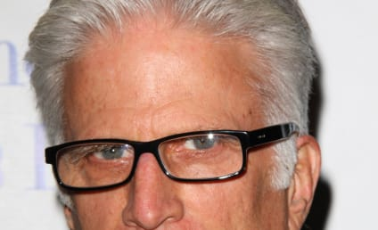 Ted Danson Joins Cast of CSI