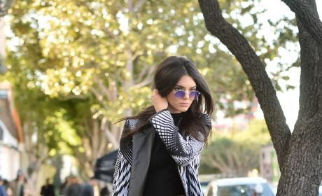 Kendall Jenner Spotted in West Hollywood