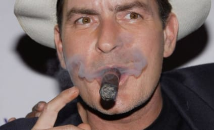 Charlie Sheen Escapes Jail in Plea Deal
