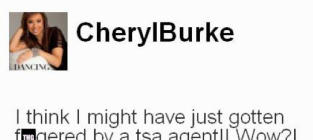 TSA Agent Gets to Third Base With Cheryl Burke