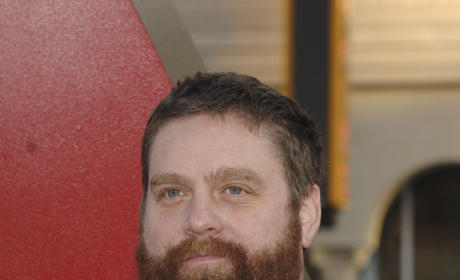 Zach Galifianakis Photograph