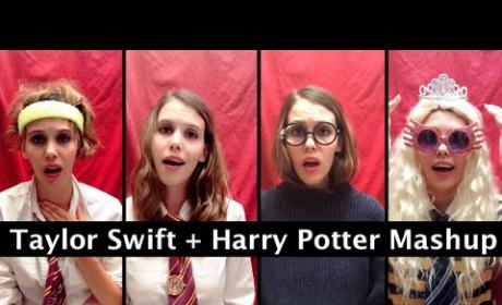 Taylor Swift Meets Harry Potter in the Ultimate Pop Culture Mash-Up