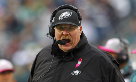 Andy Reid: Fired by Philadelphia Eagles