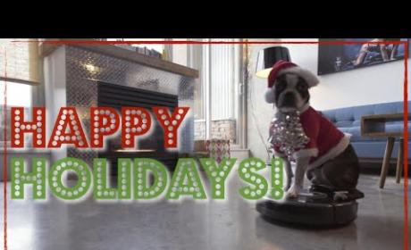 Merry Christmas... From a Dog Riding a Roomba!