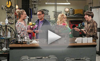 Watch The Big Bang Theory Online: Check Out Season 9 Episode 19!