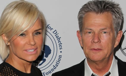 David Foster: Yolanda Foster Does NOT Have Lyme Disease!