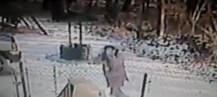 Woman Kicks Snow in Stray Cat's Face, Gets OWNED By Renegade Feline