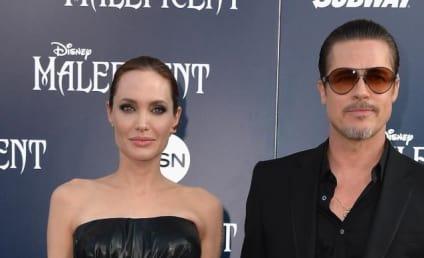 Brad Pitt Granted Restraining Order Against Attacking Prankster