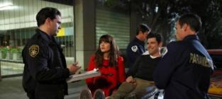 Watch New Girl Online: Season 3 Episode 9