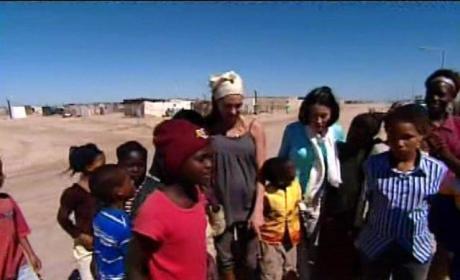 Brangelina Donates $2M to Namibian Wildlife Refuge