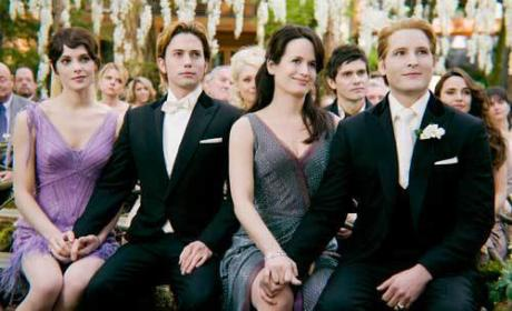 Breaking Dawn Bridesmaid Dresses: Revealed!