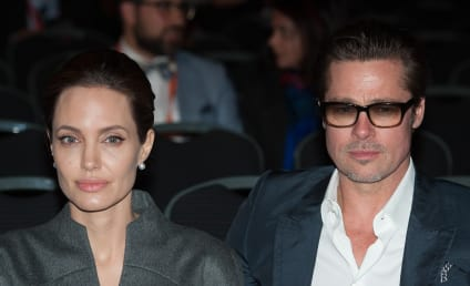 Brad Pitt Speaks Out on Angelina Jolie Divorce: Leave My Kids Alone!