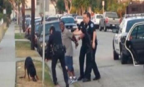 Police Release Second Dog Killing Video: Does It Exonerate Officer?