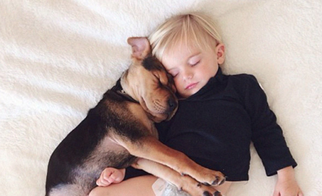 Baby and Dog Sleep Together
