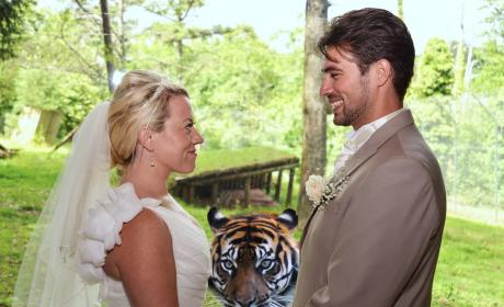 Tiger Photobombs Wedding Reception: Real or Fake?