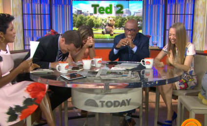 """OOPS! Willie Geist Refers to Amanda Seyfried as """"Titsy"""""""