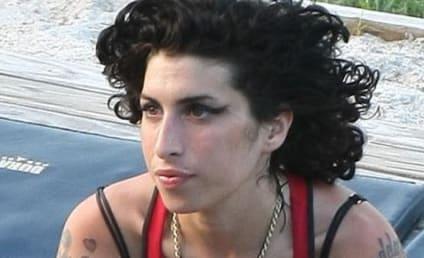 Amy Winehouse's London Apartment Ransacked