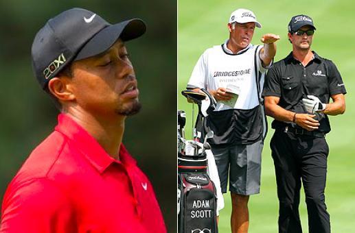 Tiger, Steve, Scott