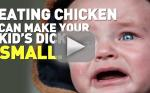 PETA Issues Warning: Eating Chicken Will Shrink Your Son's Penis!