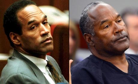 O.J. Simpson Trial Stars: Where Are They Now?