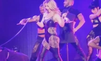 Britney Spears to David Lucado: Get on Your Knees and BARK, You Little B-tch!