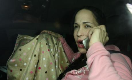 Octomom on the Horn