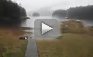 Helpless Woman Watches Bear Eat Her Kayak