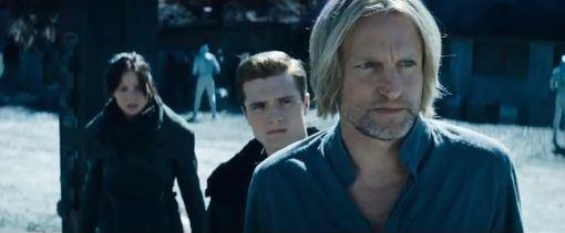 Woody Harrelson in Catching Fire