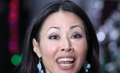 Ann Curry Firing to Cost The Today Show Millions