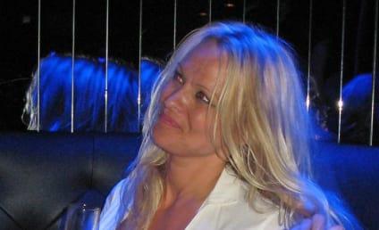 Samantha Ronson, Other Stars Accidentally Hit Strip Club