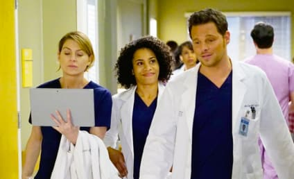 Grey's Anatomy Season 13 Premiere Recap: I Wanna Undo It