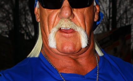 Hulk Hogan Turns to FBI for Sex Tape Assistance