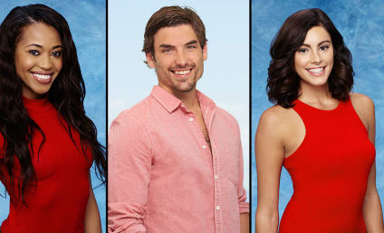 Bachelor in Paradise Season 3: Who's In?!?