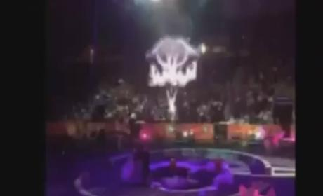 Ringling Bros. Acrobats Fall During Circus; Eight Performers Hospitalized