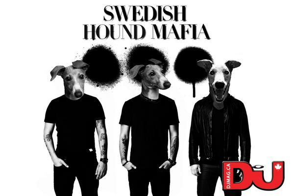 Swedish Hound Mafia