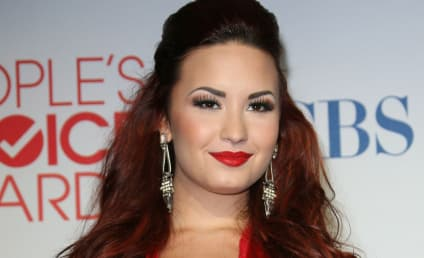 Demi Lovato: The Triumphant (Temporary?) Twitter Return!