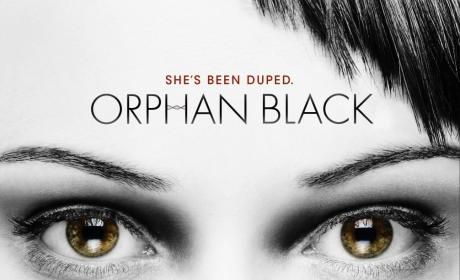 Orphan Black, Breaking Bad Lead TCA Award Nominations