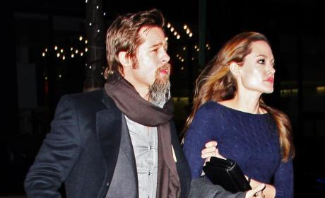 Angelina, Brad Criticized by Namibian Society