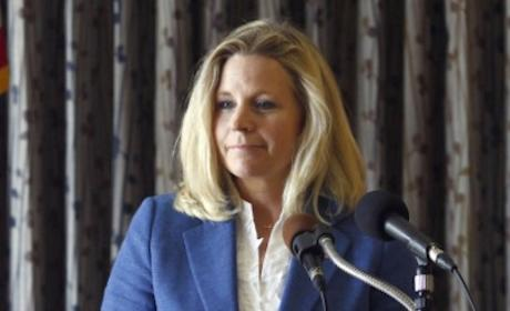 Liz Cheney: I Am Against Gay Marriage
