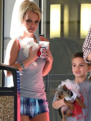 Britney, New Dog