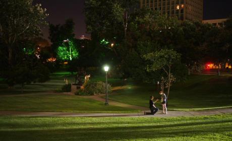 Reddit Marriage Proposal: Austin Photographer Captures Magical Moment Online