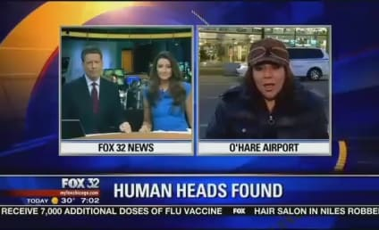 18 Human Heads Found at O'Hare Airport