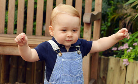 Prince George WALKS in New Official Portrait: See It Here!