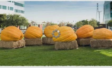 Google Pumpkin Carving Video: Coolest Logo Ever?