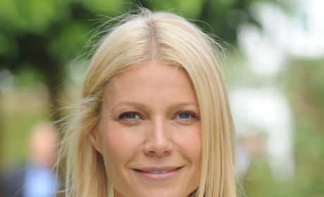 Gwyneth Paltrow Dishes on Celebrity Baby Play Dates