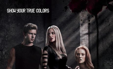 Did you like the season four premiere of True Blood?