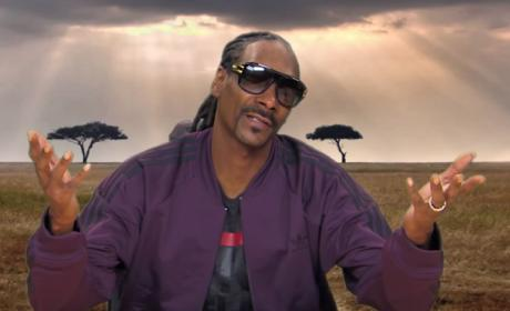 Snoop Dogg Narrates a Tree Frog Orgy on Jimmy Kimmel Live