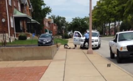 Kajieme Powell Shooting: Does Video Support St. Louis Police Account? [GRAPHIC CONTENT]