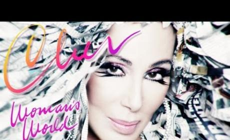 Would you go see Cher on tour in 2014?